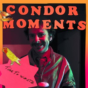 Image for 'Condor Moments'