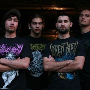 Image for 'Ossuary Anex'