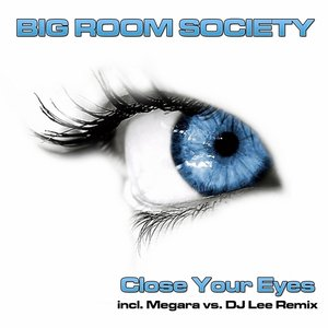 Image for 'Bigroom Society'