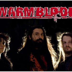 Image for 'WARMBLOOD'