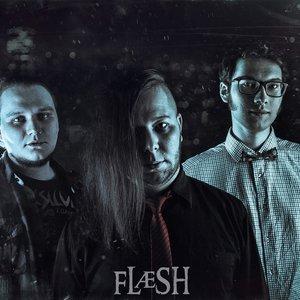 Image for 'FLÆSH'