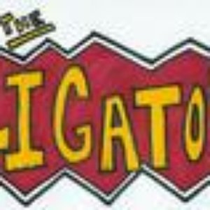 Image for 'The Aligators'