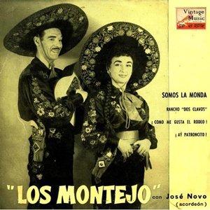 Image for 'José Novo Al Acordeón'