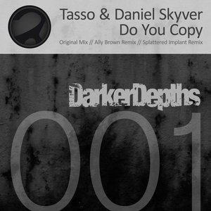 Image for 'Tasso & Daniel Skyver'