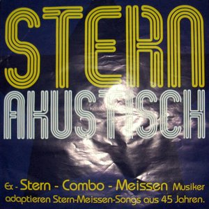 Image for 'STERN - akustisch'