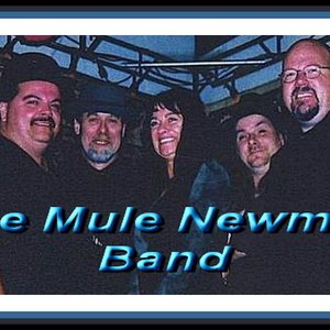 Image for 'The Mule Newman Band'