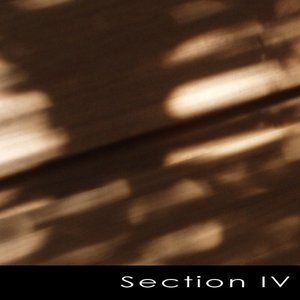 Image for 'Section IV'