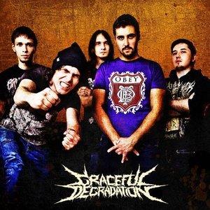 Image for 'Graceful Degradation'