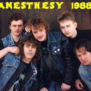 Image for 'Anesthesy'