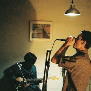 Image for 'The Stevens'
