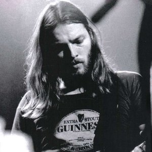 Immagine per 'David Gilmour'