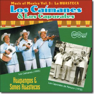 Image for 'Los Caporales de Panuco'