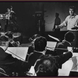 Image for 'Leonard Bernstein & London Symphony Orchestra'