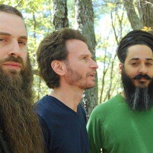 Image pour 'New Zion Trio'