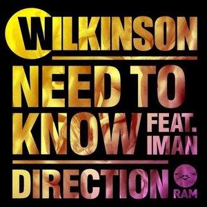 Bild für 'Wilkinson Feat. Iman'