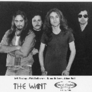 Image for 'The Want'