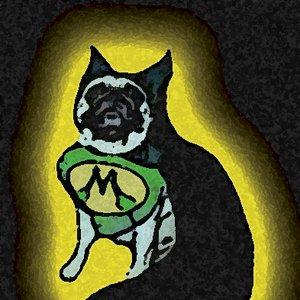 Bild für 'Mallard the Wonderdog'