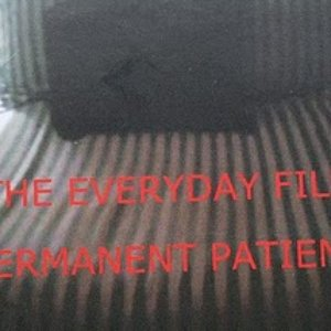 Image for 'The Everyday Film'