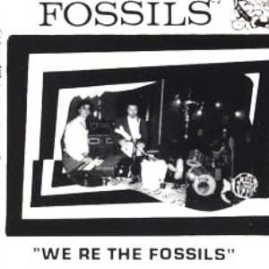 Image for 'The Fossils (ITA)'