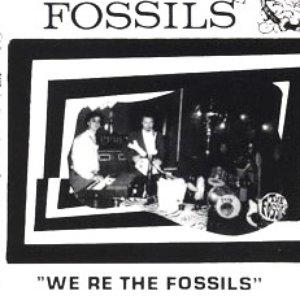 Bild für 'The Fossils (ITA)'