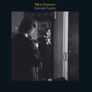 Image for 'Meta Forever'
