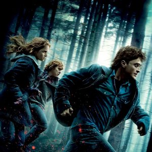 Image pour 'Harry Potter And The Deathly Hallows Part 1'