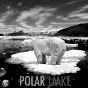 Image for 'Polar Laake'
