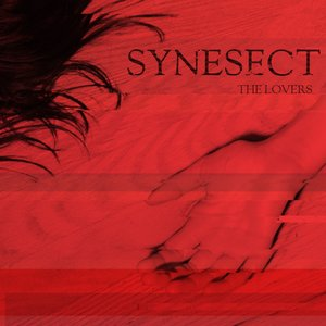 Image for 'Synesect'