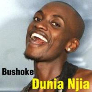 Image for 'Bushoke'