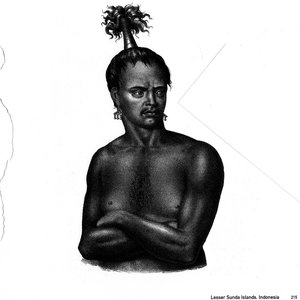Image for 'Hairstyles Of The World'