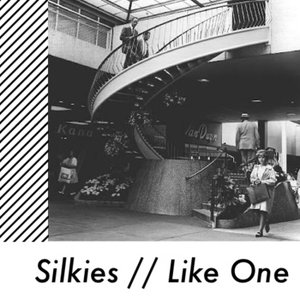 Image for 'Silkies'