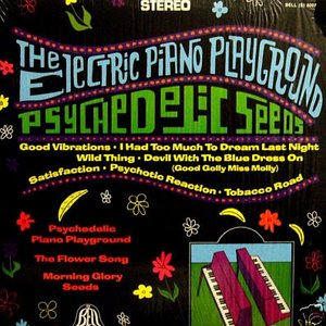 Image for 'Electric Piano Playground'