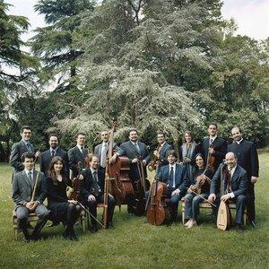 Immagine per 'Venice Baroque Orchestra [Orchestra]'