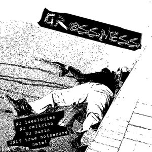 Image for 'Grossness'