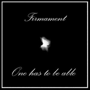 Image for 'Firmament*'