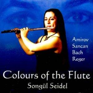 Image for 'Songül Siedel'