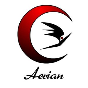 Image for 'Aerian'