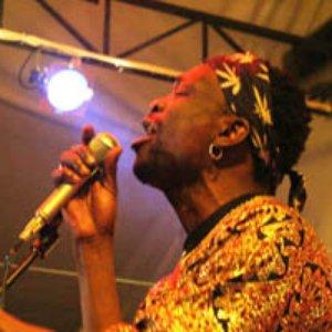 Bild för 'Simba Vibration'