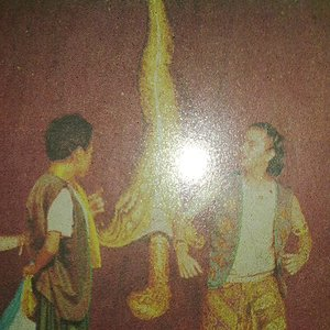 Bild für 'Macaulay'