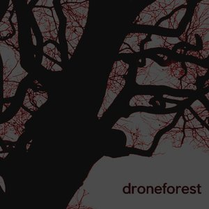 Image for 'Drone Forest'