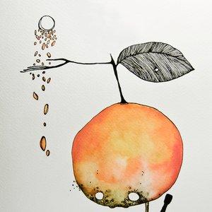 Image for 'niño naranja'