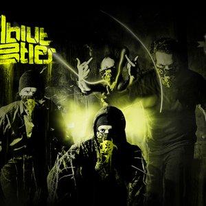 Image for 'Vollbluthustler'