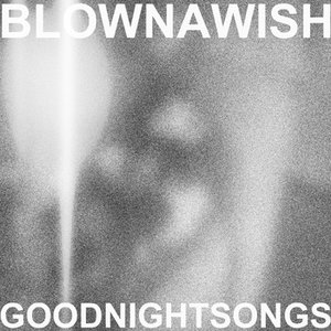 Image for 'Blown A Wish'