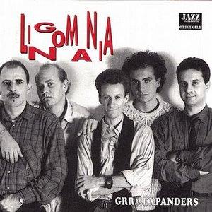 Image for 'Lingomania'