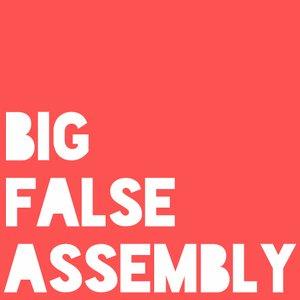 Image for 'Big False Assembly'