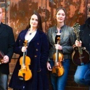 Image for 'The Melrose Quartet'