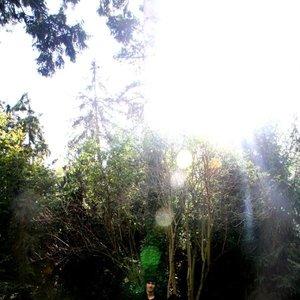 Image for 'The Cobblestones'