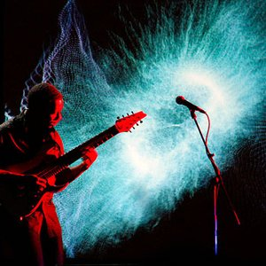 Immagine per 'Animals as Leaders'