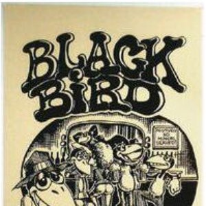 Image for 'The Blackbirds (with SRV)'