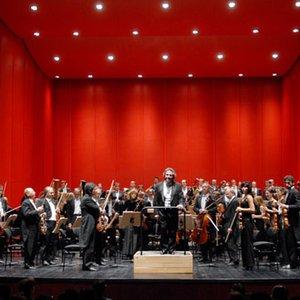 Image for 'Coro de la Comunidad de Madrid, Orquesta Sinfónica de Galicia & Peter Maag'